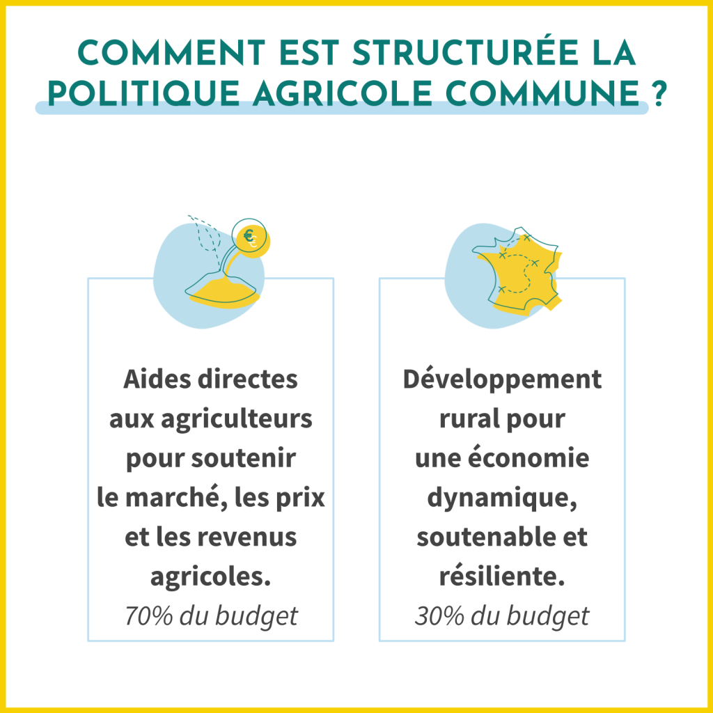 Comment est structurée la PAC (Politique Agricole Commune) ? Les aides directes aux agriculteurs pour soutenir le marché, les prix et les revenus agricoles représentent 70% de son budget. Le développement rural pour une économie dynamique, soutenable et résiliente représente 30% de son budget.