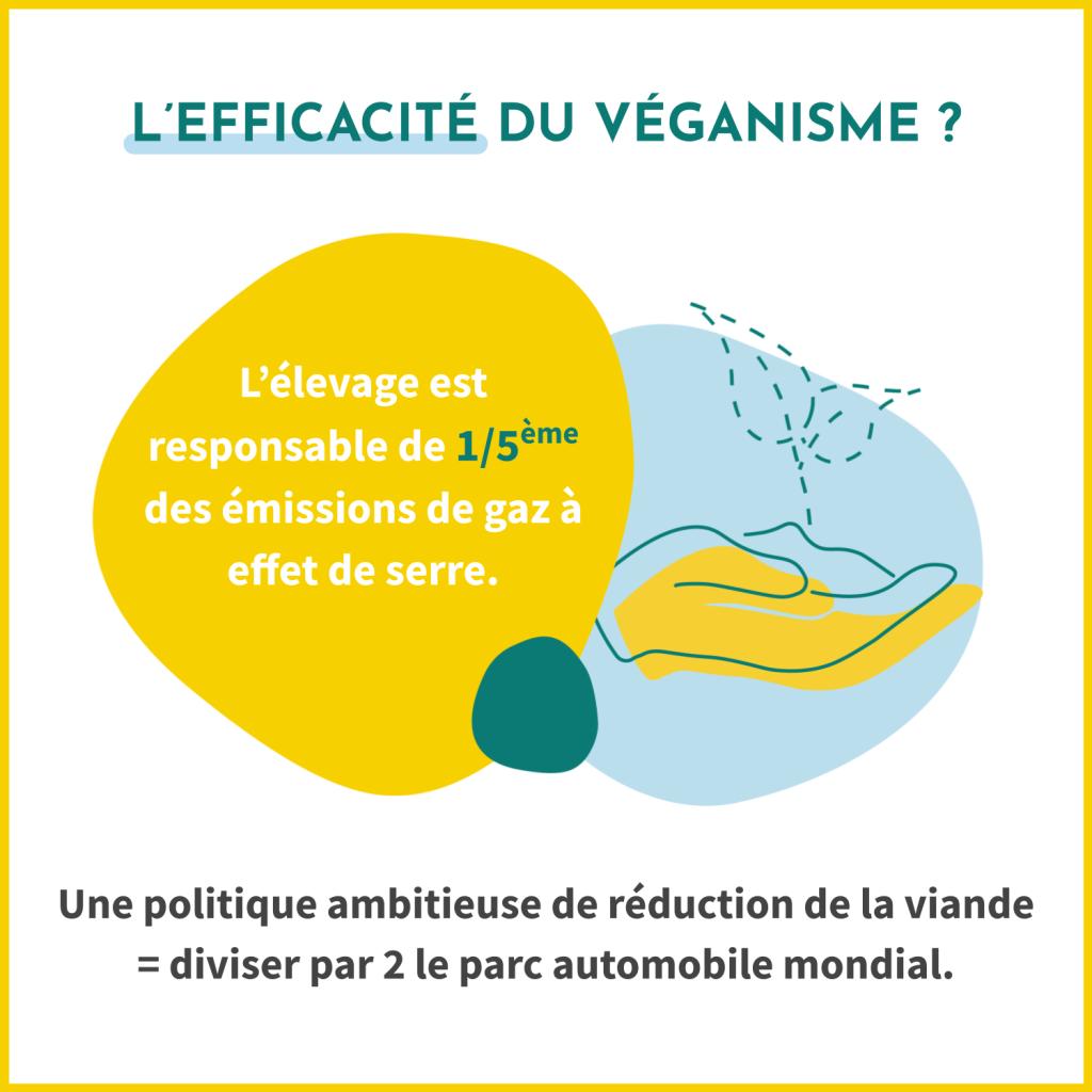 L'efficacité du véganisme ? L'élevage est responsable de 1/5ème des émissions de gaz à effet de serre. Une politique ambitieuse de réduction de la viande est l'équivalent de diviser par deux le parc automobile mondial.