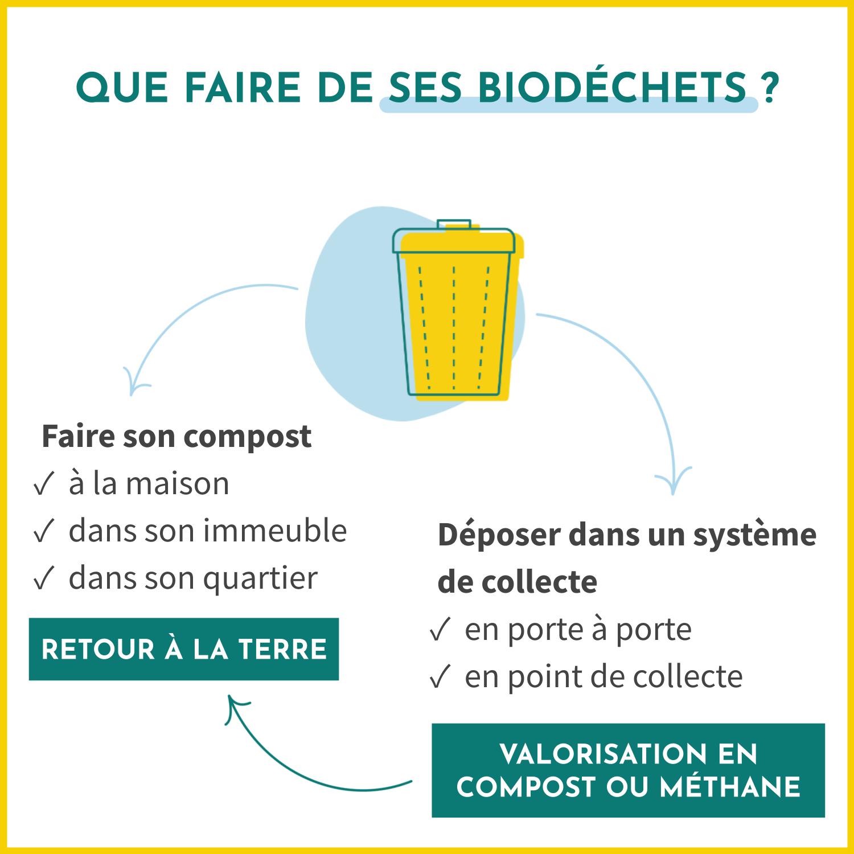 Que faire de ses biodéchets ? Faire son compost ou les déposer dans un système de collecte pour qu'ils soient